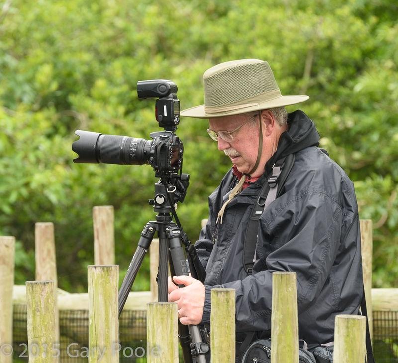 Bob Kovak at the Alligator Farm