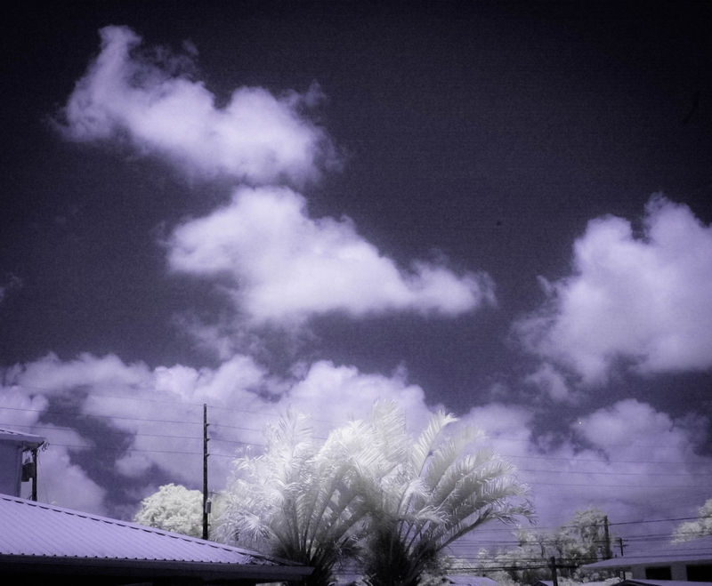 BUILDING_TREES_CLOUDS