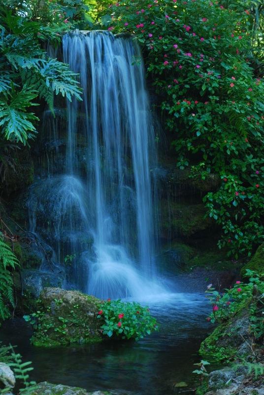 Silver Springs Waterfalls