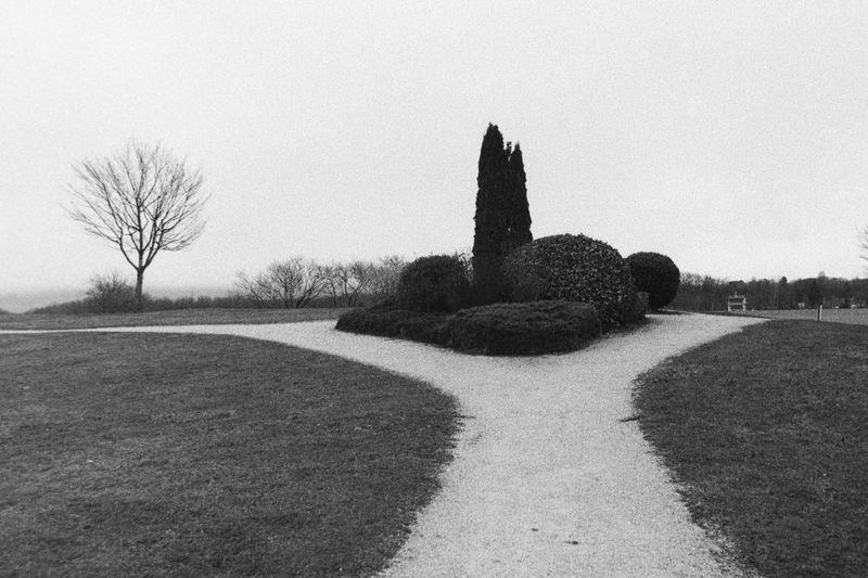 Landscaping_Etang_de_Colovrex.jpg