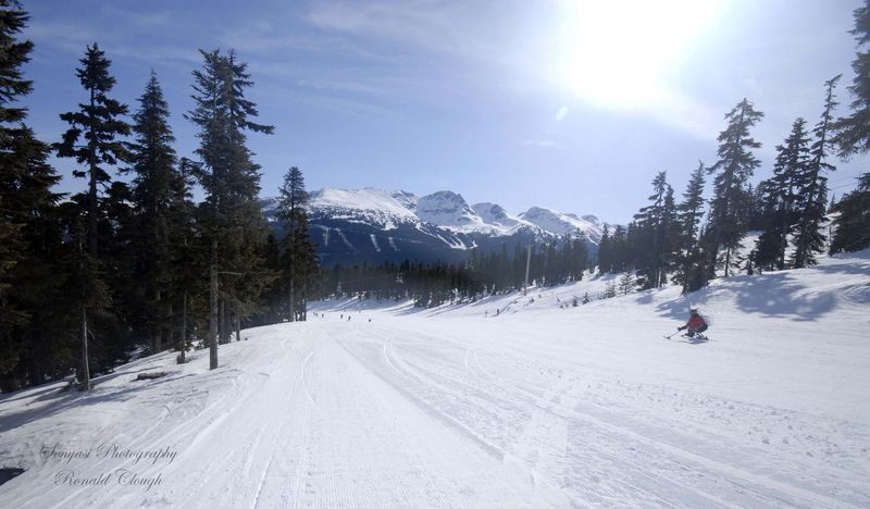 Whistler_Looking_to_Blackcomb