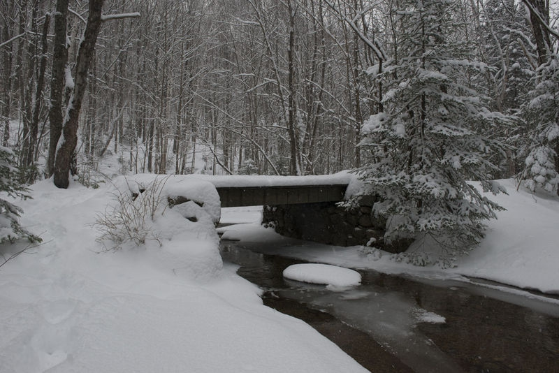Foot bridge, Lincoln Woods Trail, White Mountain National Forest, NH